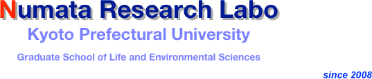 Numata Research Labo